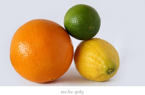 makanan pembantu diet - jeruk