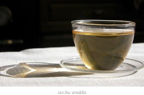makanan pembantu diet - teh hijau
